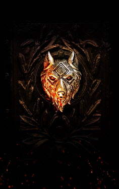 Stephen Mulcahey A wolfs ornament on a carved door