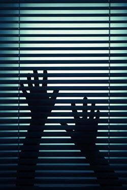 Magdalena Russocka silhouette of hands behind blind Women