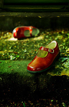 Stephen Mulcahey Red shoes lying on step outdoors Miscellaneous Objects