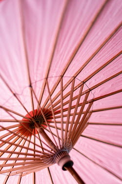 Maria Petkova close up of pink parasol Miscellaneous Objects