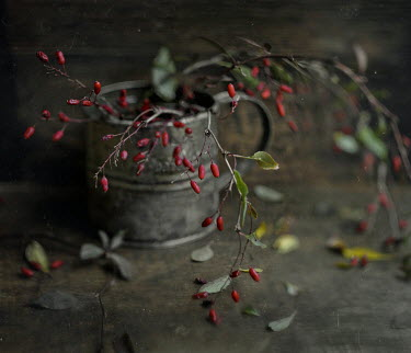 Andreeva Svoboda RED BERRIES IN PEWTER CUP Flowers