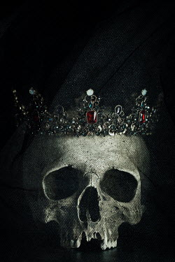 Amy Weiss JEWELLED CROWN ON SKULL Miscellaneous Objects