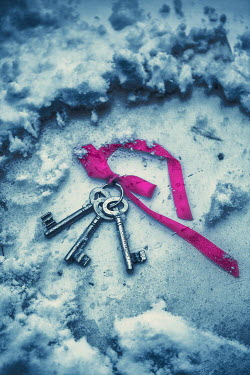 Magdalena Russocka bunch of keys with purple ribbon lying beneath ice