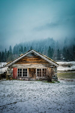 Des Panteva CABIN IN SNOW WITH FOGGY FOREST Houses