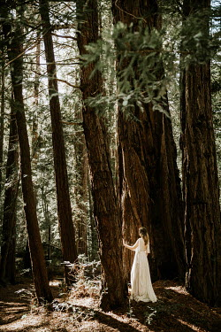 Paige Nelson WOMAN IN WHITE DRESS WAITNG IN FOREST Women