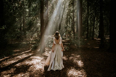 Paige Nelson WOMAN IN SILK GOWN IN SUNLIT FOREST Women