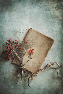 Magdalena Wasiczek RED BERRIES TIED WITH STRING ON BOOK Flowers