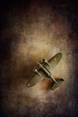 Magdalena Wasiczek RETRO MODEL PLANE FROM ABOVE Miscellaneous Objects