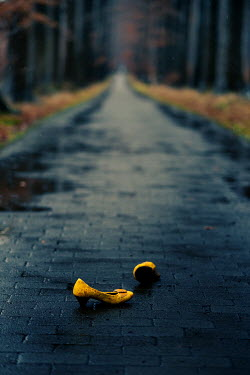 Maria Petkova yellow shoes abandoned on country road
