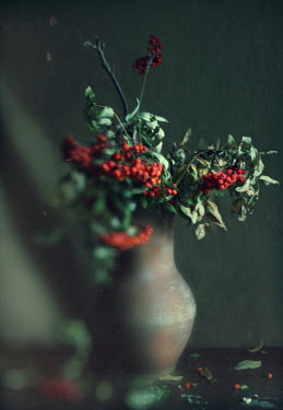 Andreeva Svoboda Twigs with red berries in vase