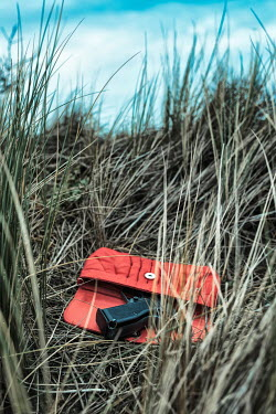 Ysbrand Cosijn Red purse with pistol in grass