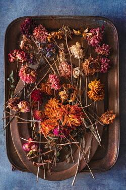 Magdalena Wasiczek mixture of dried flowers