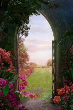 Drunaa Garden gate with roses