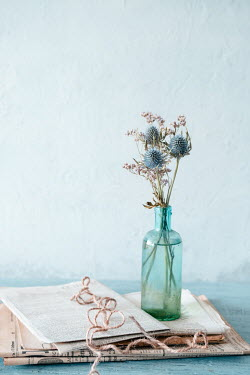 Magdalena Wasiczek small bunch of blue thistles in glass bottle, old newspapers and piece of string