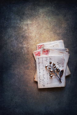 Magdalena Wasiczek old letters and silver lilies of the valley