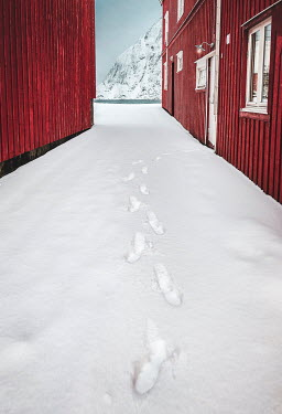 Evelina Kremsdorf Footprints in snow by cabin