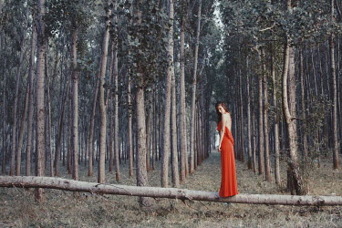 Felicia Simion Young woman in red dress standing on fallen tree