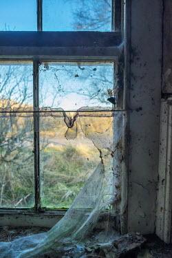 David Baker Window in abandoned building