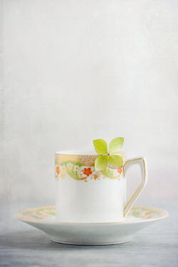 Magdalena Wasiczek Small vintage teacup with hydrangea petal