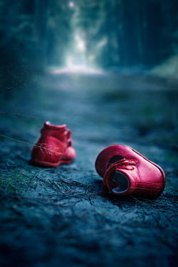 Natasza Fiedotjew Childs red shoes left on road in woods