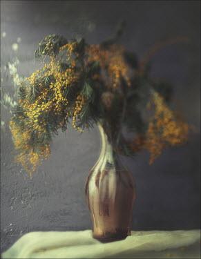 Andreeva Svoboda Vase with yellow flower buds