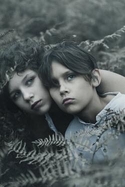 Giovan Battista D'Achille Children by ferns