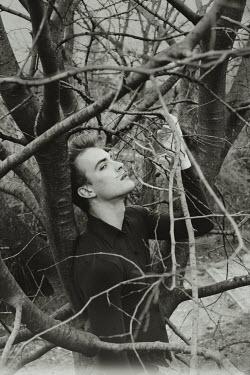 Giovan Battista D'Achille Young man in bare tree
