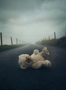 Mark Owen TEDDY BEAR LYING ON COUNTRY ROAD AT DUSK Miscellaneous Objects
