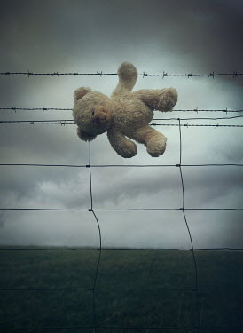 Mark Owen TEDDY BEAR ON WIRE FENCE IN COUNTRYSIDE Miscellaneous Objects