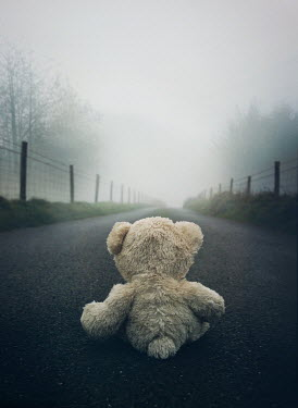 Mark Owen TEDDY BEAR ON COUNTRY ROAD AT DUSK Miscellaneous Objects