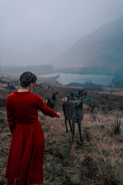 Rekha Garton WOMAN FEEDING DEER ON MOORLAND BY LAKE Women