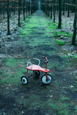 Ysbrand Cosijn Abandoned tricycle on forest path