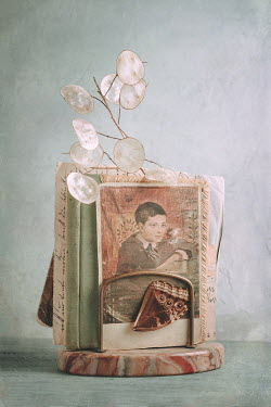 Magdalena Wasiczek portrait of a boy,butterfly wing and old letters