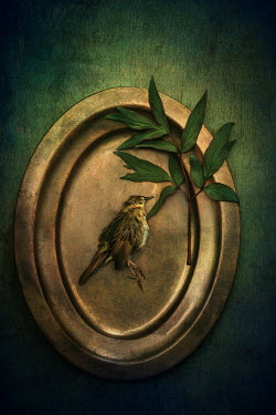 Magdalena Wasiczek small dead bird on golden tray