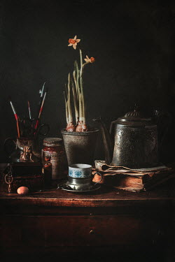 Magdalena Wasiczek Silver teapot, books,daffodils and miscellaneous objects on wooden table Miscellaneous Objects
