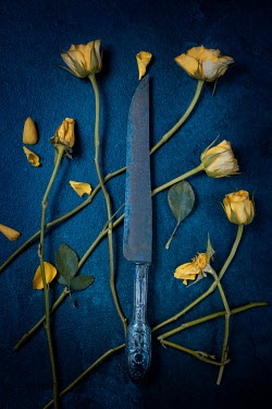 Magdalena Wasiczek yelLow roses and antique silver knife Flowers