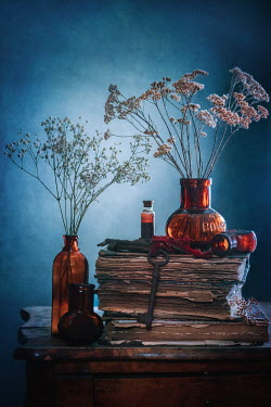 Magdalena Wasiczek withered plants, vintage bottles, old books and key Miscellaneous Objects