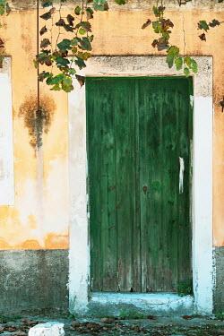 Ysbrand Cosijn WEATHERED GREEN DOOR WITH FOLIAGE Building Detail