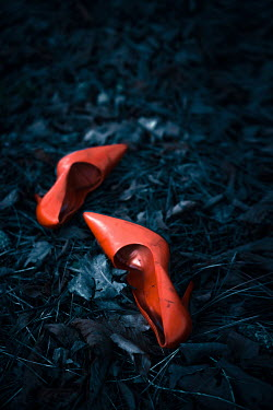 Magdalena Russocka stiletto shoes lying in leaves