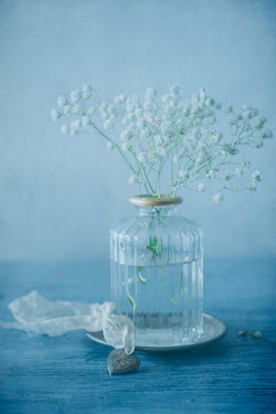 Magdalena Wasiczek white flowers in a vase and heart shaped silver locket Flowers