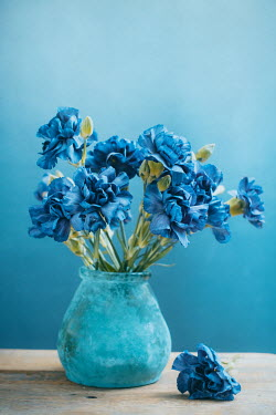 Magdalena Wasiczek blue carnations in a vase Flowers