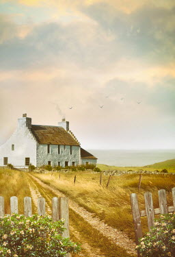 Sandra Cunningham Old farmhouse by the sea in summer Houses