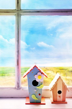 Sandra Cunningham BIRDHOUSES IN WINDOW OF HOUSE IN COUNTRY Miscellaneous Objects