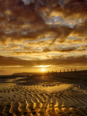 Adrian Leslie Campfield SANDY BEACH AT SUNSET WITH GOLDEN SKY Seascapes/Beaches