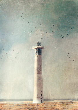 Anna Buczek BEACH WITH WHITE LIGHTHOUSE IN SUMMER Miscellaneous Buildings