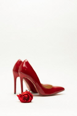 Paolo Martinez Red high heels with rose on white background