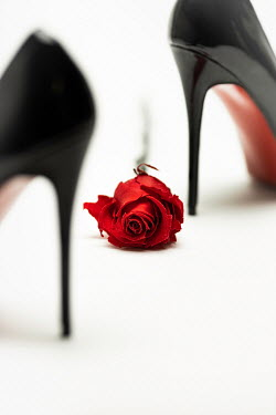 Paolo Martinez Black high heels with rose on white background