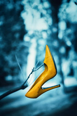 Magdalena Russocka yellow stiletto shoe hanging on twig