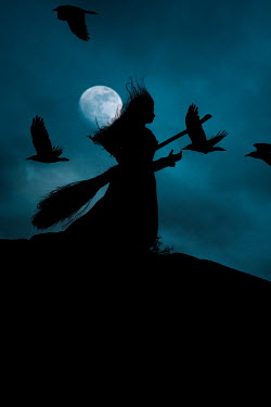 Rekha Garton WITCH AND BROOMSTICK WITH MOON AND FLYING BIRDS Women