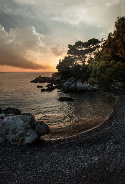 Jaroslaw Blaminsky PEBBLY BEACH WITH TREES AND ROCKS AT SUNSET Seascapes/Beaches
